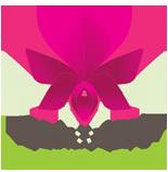 Orchideeën kado